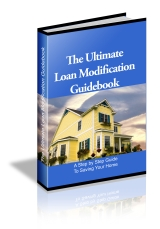 Loan Mod Guidebook
